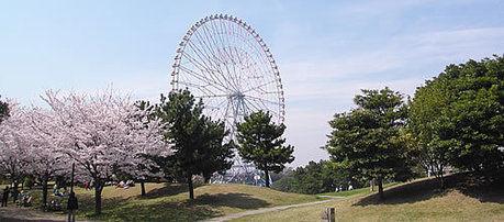 葛西臨海公園の桜とお花見の様子