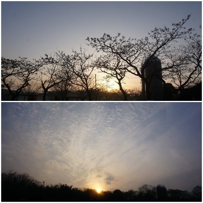 サイロ越しの朝日と夕日