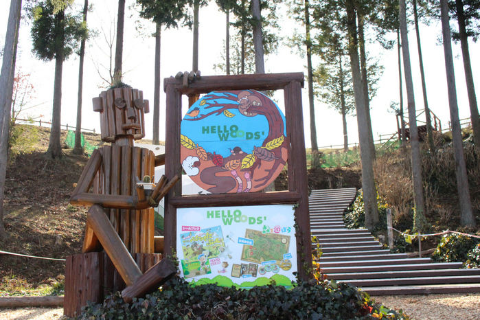 【森と星空キャンプヴィレッジ】ハローウッズの森