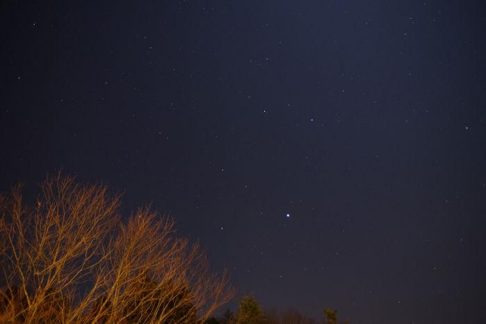 森と星空のキャンプヴィレッジの星空