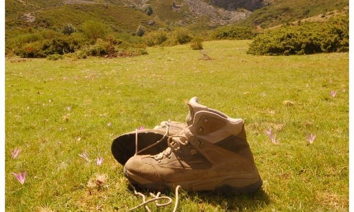 芝生に置かれたブーツ