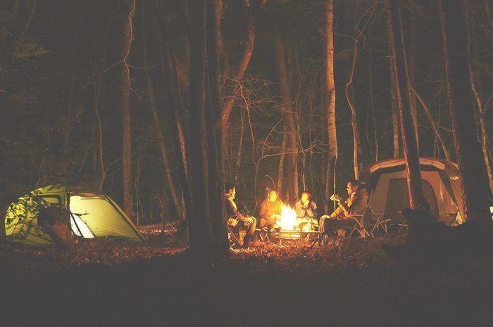 夜の林間で焚き火を囲む人々