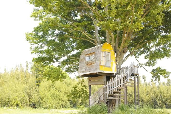 一番星ヴィレッジのツリーハウス