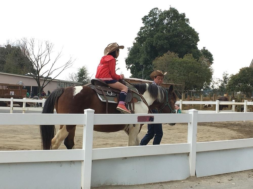 東武動物公園の動物園内にあるふれあいの森では、ポニーの乗馬体験ができます。