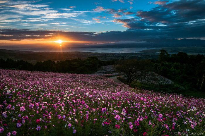 夕日が沈む長崎県雲仙市の仁田峠