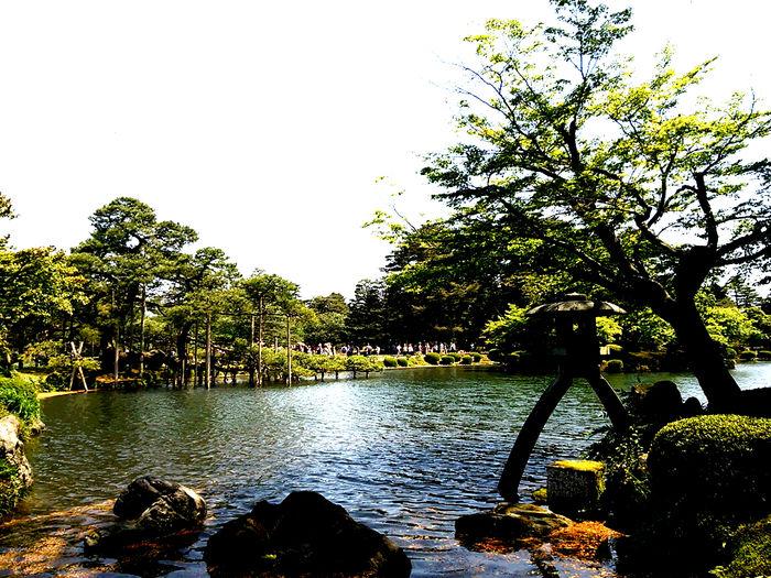 石川県加賀市の池