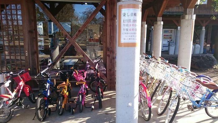 出会いの森総合公園オートキャンプ場のレンタル自転車置き場