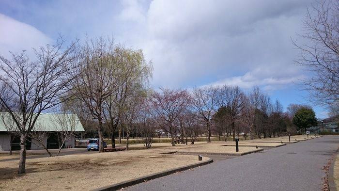 出会いの森総合公園オートキャンプ場の区画サイト