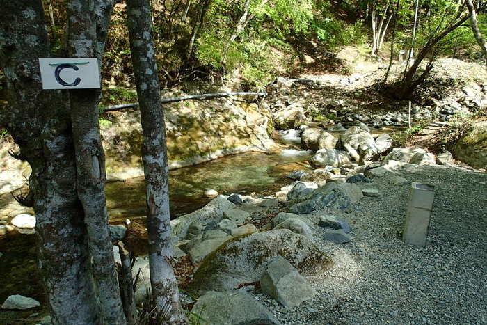 山伏オートキャンプ場の川沿い木立の中のサイト
