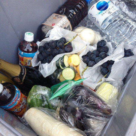 クーラーボックス内の食材の鮮度を保つ為に保冷剤代わりに凍らせた飲料や焼き肉のタレ