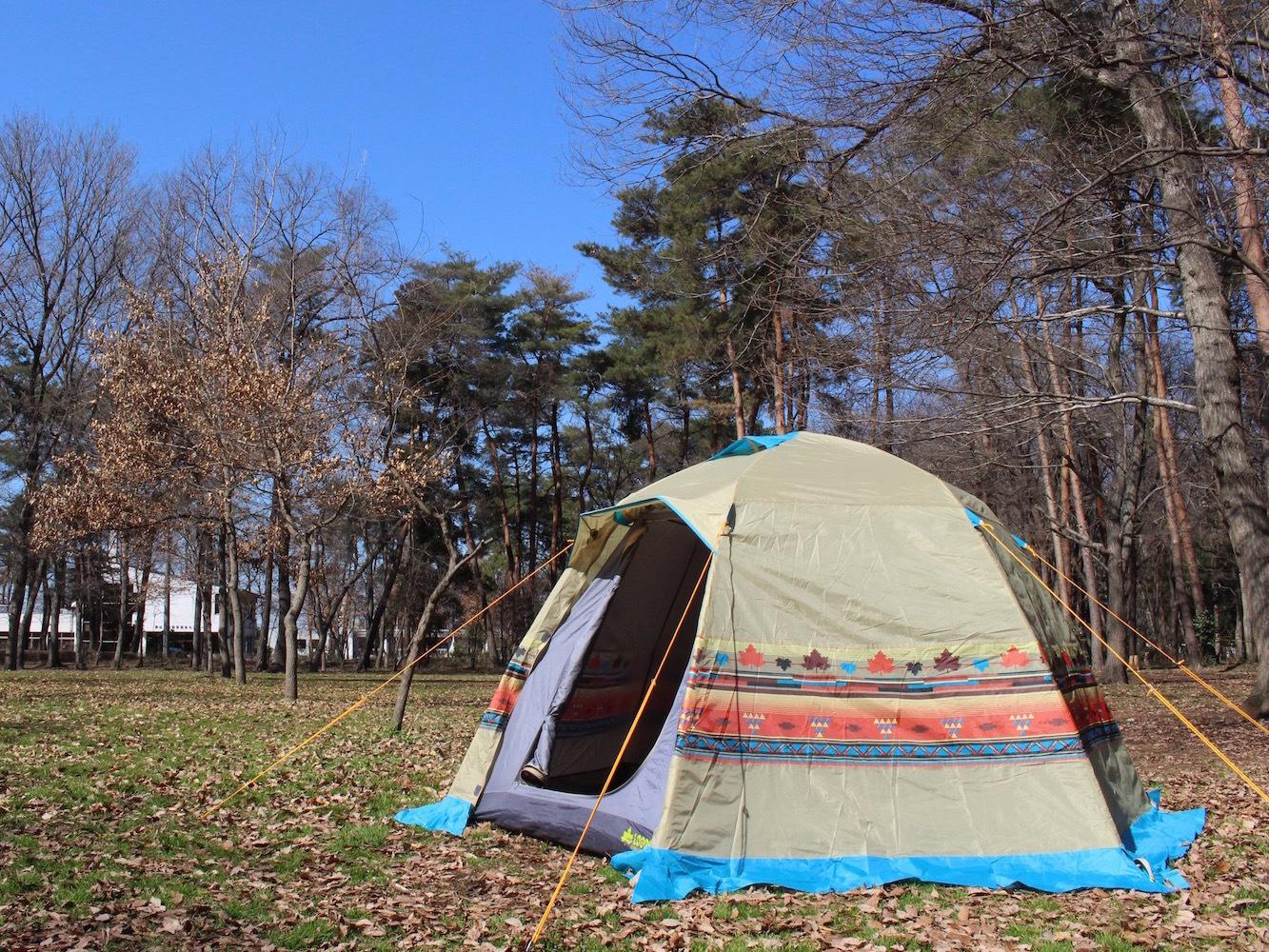 ロゴスの人気テント9種を建ててみた!初心者におすすめ理由がわかりました