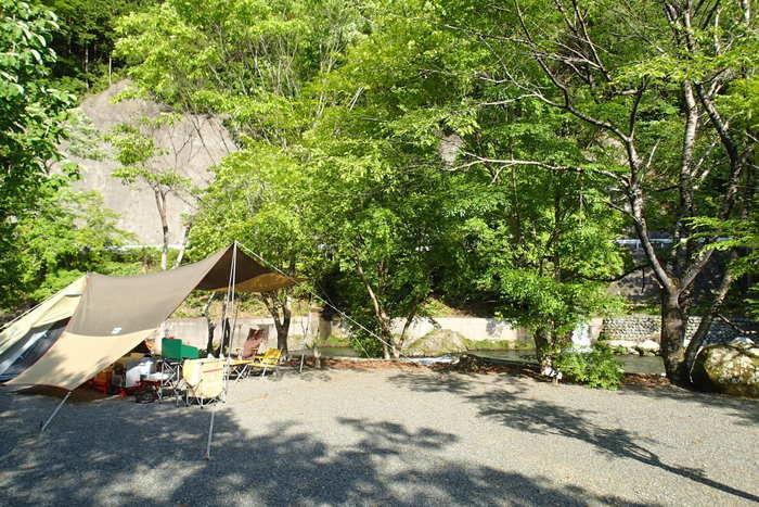 木々に囲まれたキャンプサイト