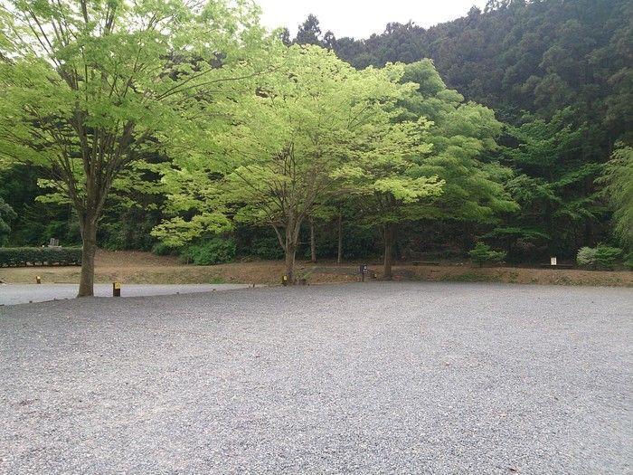 毛呂山町ゆずの里オートキャンプ場のフリーサイト