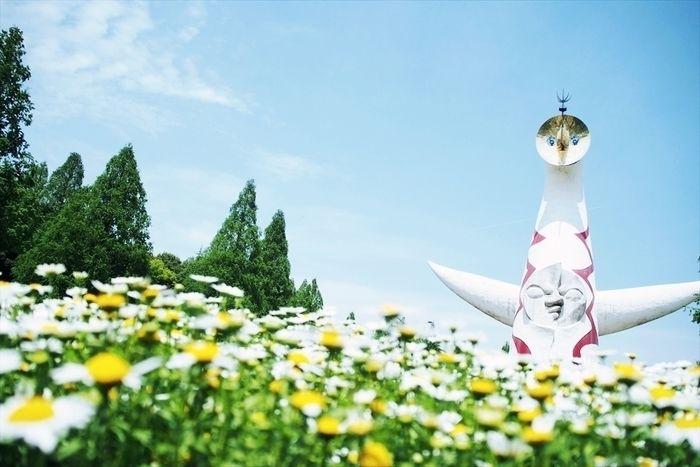万博記念公園の花と太陽の塔