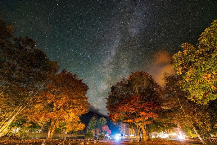一眼レフカメラで撮影された夜の森