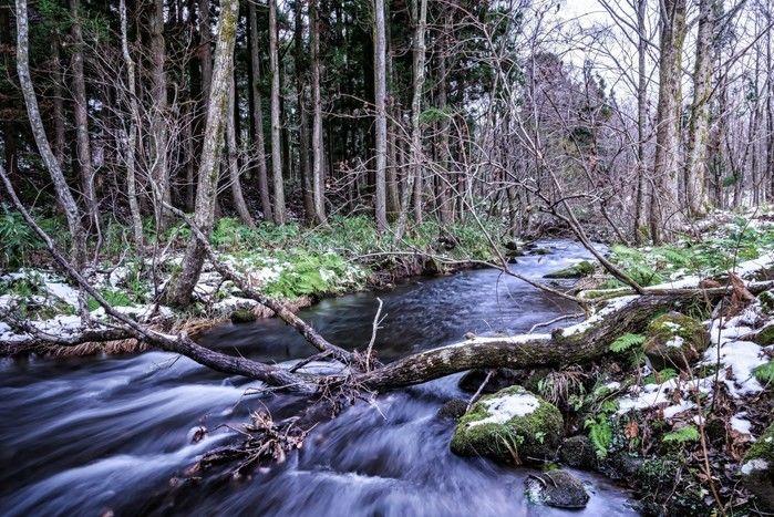 川の流れを感じることのできる写真