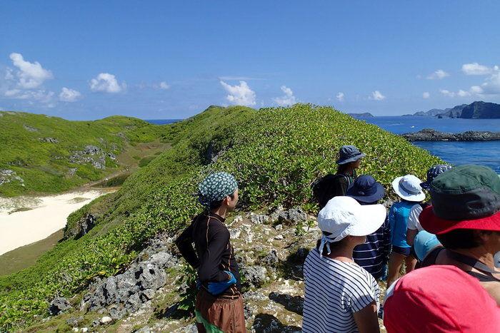 南島の丘の上から景色を眺める人々