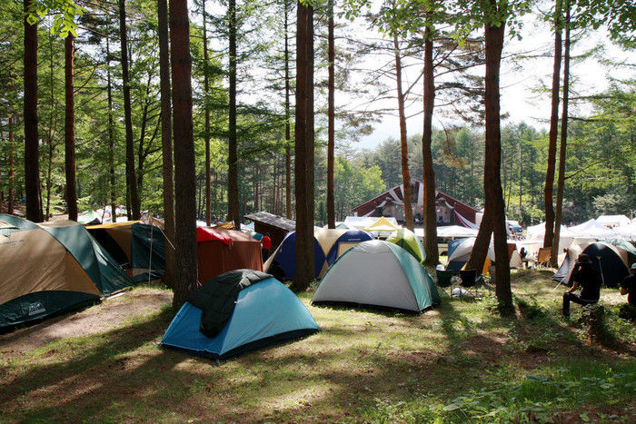 林の中に並んだテント