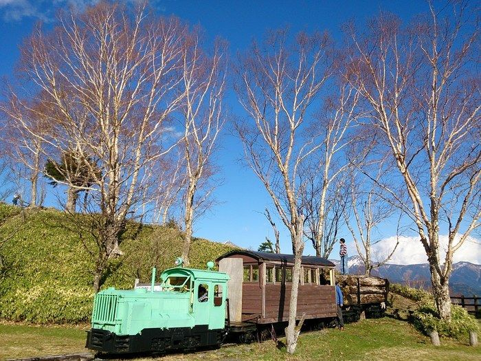 遠山森林鉄道の車両で遊ぶ親子