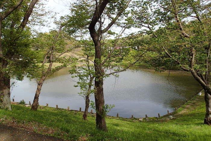 水海道あすなろの里の湖の様子