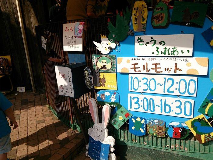 町田リス園のふれあい広場