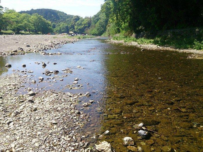 巾着田を流れる小川