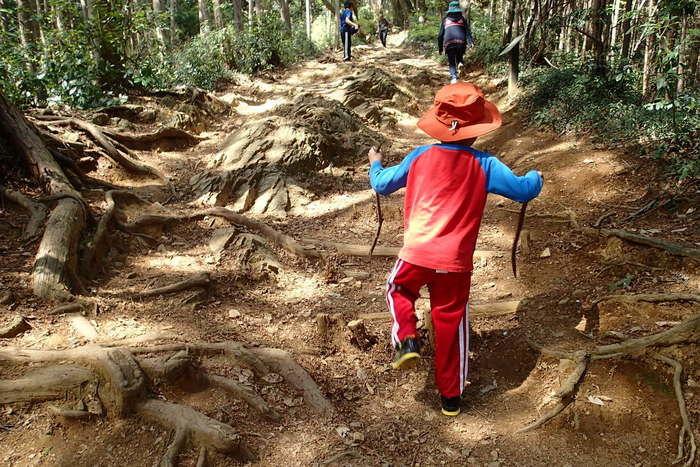 日和田山の登山を楽しむ子供達