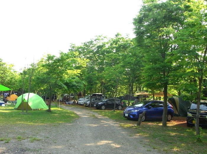 長瀞オートキャンプ場のビューサイト