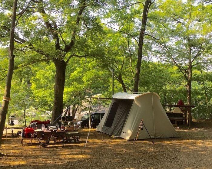 長瀞オートキャンプ場の森サイトのテントサイトの外観