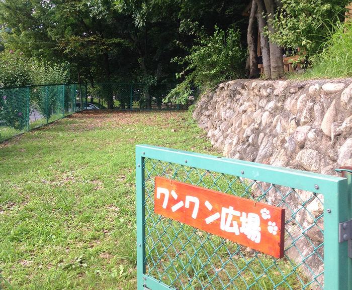 長瀞オートキャンプ場のドックラン