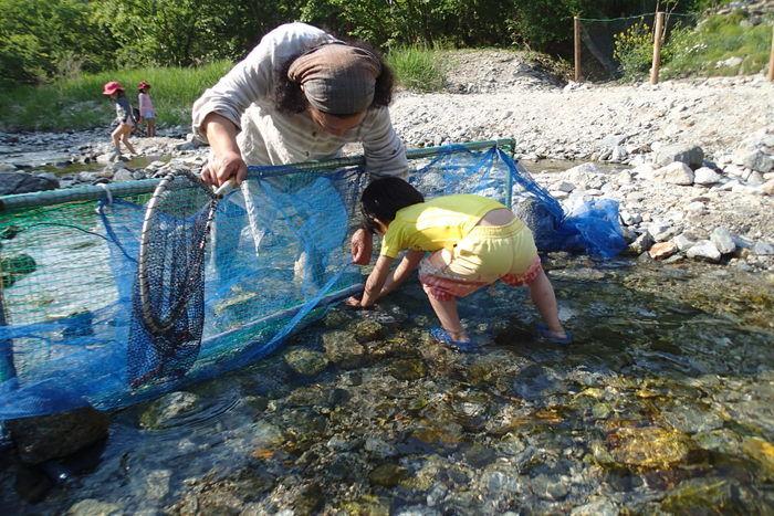 川をせき止めて作った即席のつかみ取りを行う子供