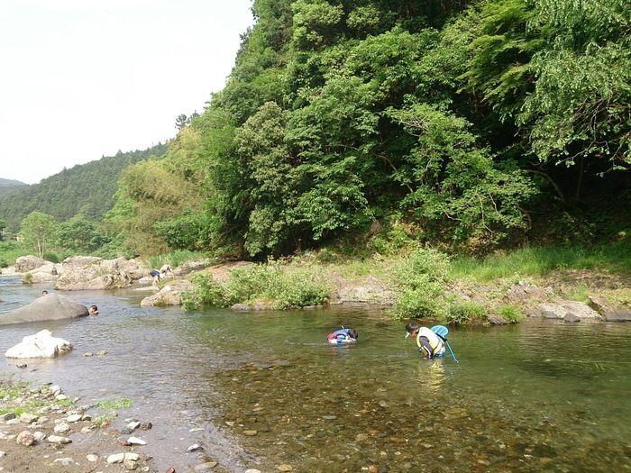 cazuキャンプ場を流れる川