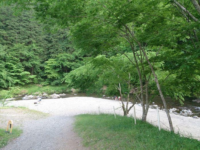 緑が豊かなcazuキャンプ場の川辺