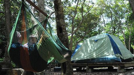 テントの横の木にハンモックを取り付け、上で本を読む親子