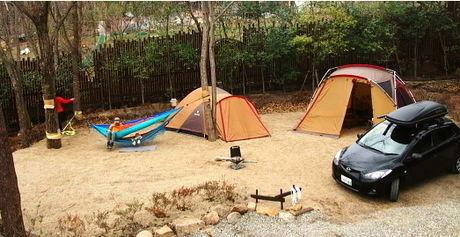 キャンプ・アンド・キャビンズ那須高原のキャンプサイトの木にハンモックを吊るした様子