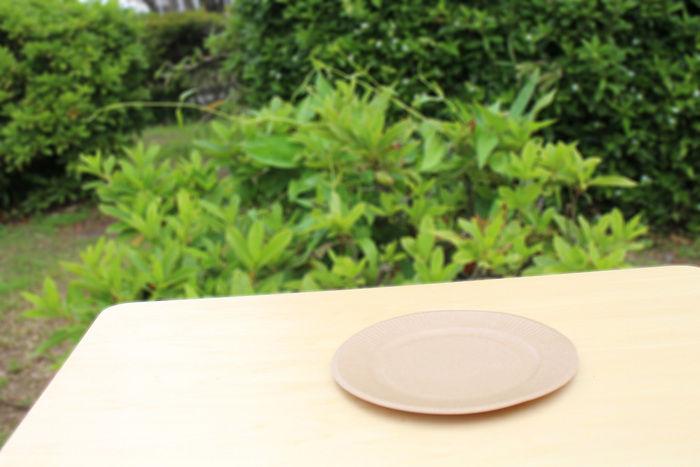 机に上に置かれた紙皿
