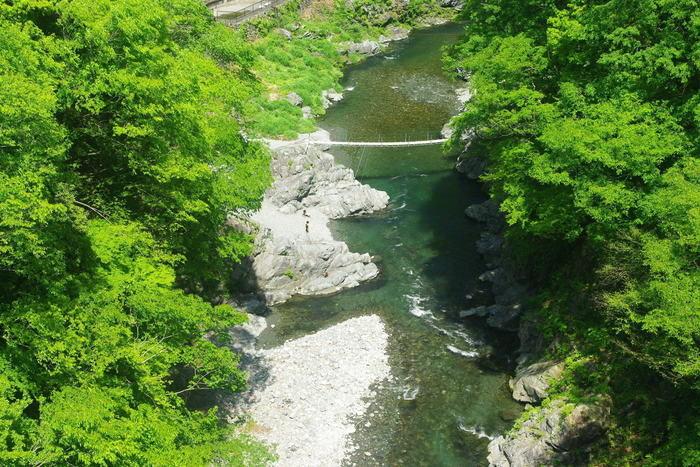 奥多摩の自然に囲まれた川