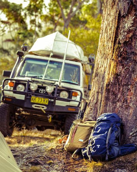 木の幹に置かれたカリマーのリュック