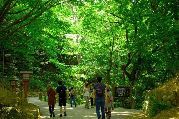 山道の風景を楽しみながら歩く人々