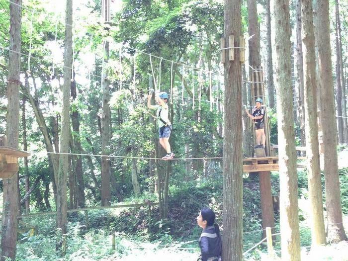 樹の上の冒険王国ターザニアでターザンを楽しむ子供達