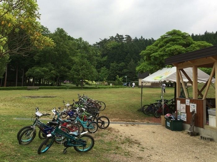 グリム冒険の森で借りることが出来るマウンテンバイク