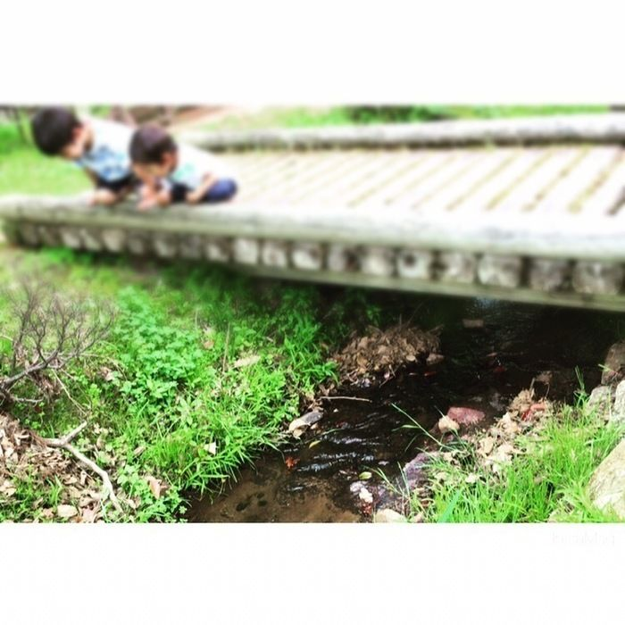 グリム冒険の森で遊ぶ子供