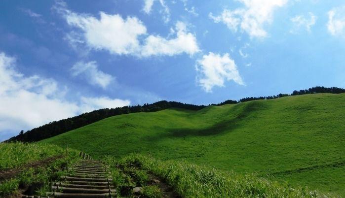 春夏の曽爾高原の風景