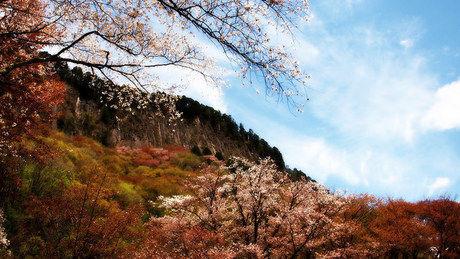 秋の曽爾村の風景
