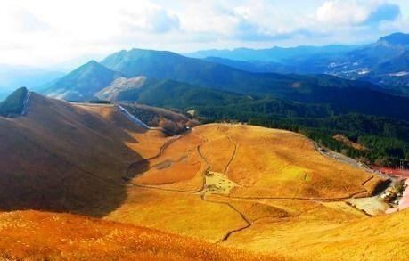 上空から見た曽爾高原のススキ