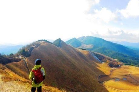 ススキが黄金色に輝く曽爾高原