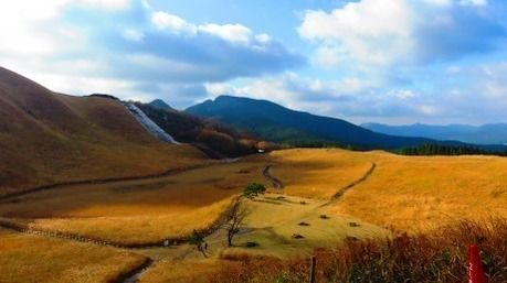 秋の曽爾高原