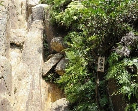 六甲山の荒地山の岩梯子