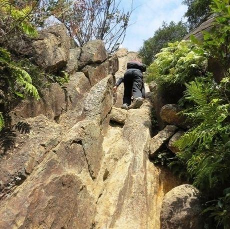 荒地山を登る様子