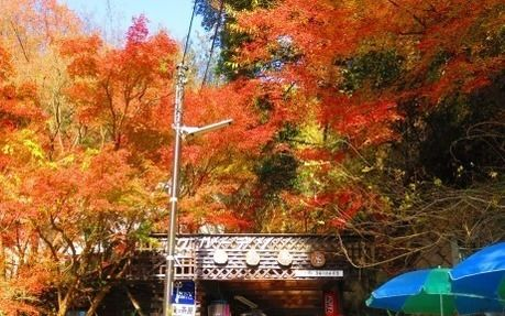 秋の六甲山のロックガーデンコースの入り口